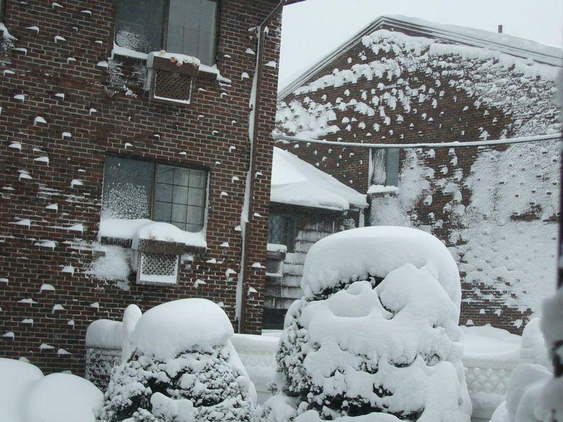 Snow-2011 (8)
