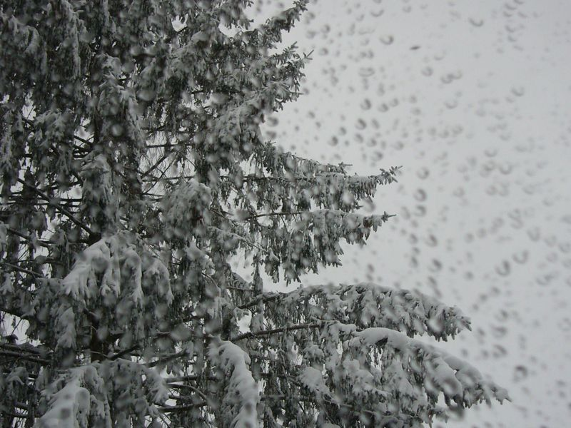 Snow-2011 (13)