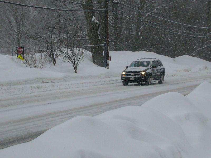 Snow-feb-1-2011 (8)