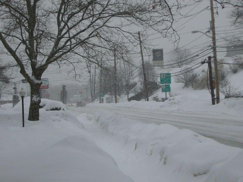 Snow-feb-1-2011 (9)